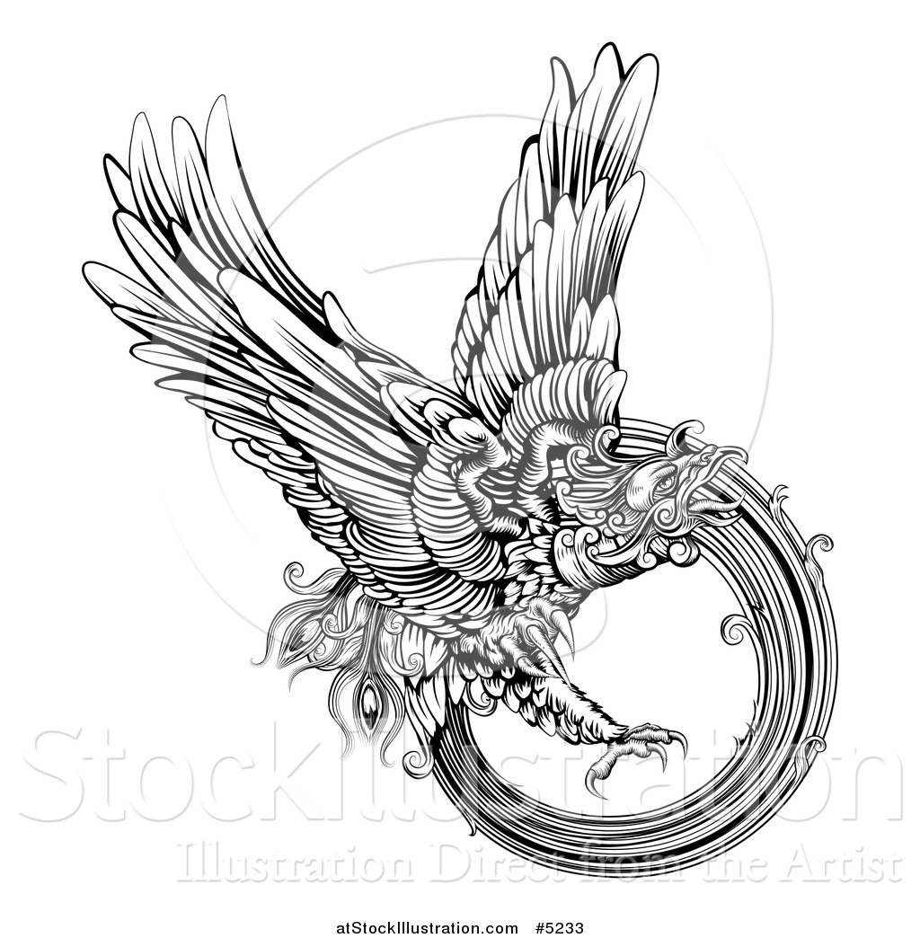 vector illustration of a black and white engraved majestic phoenix