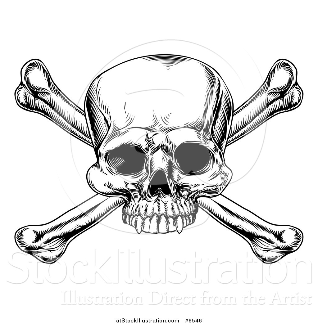 vector illustration of a black and white engraved skull and