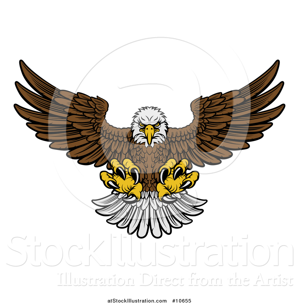 Cartoon Eagle Flying Simple