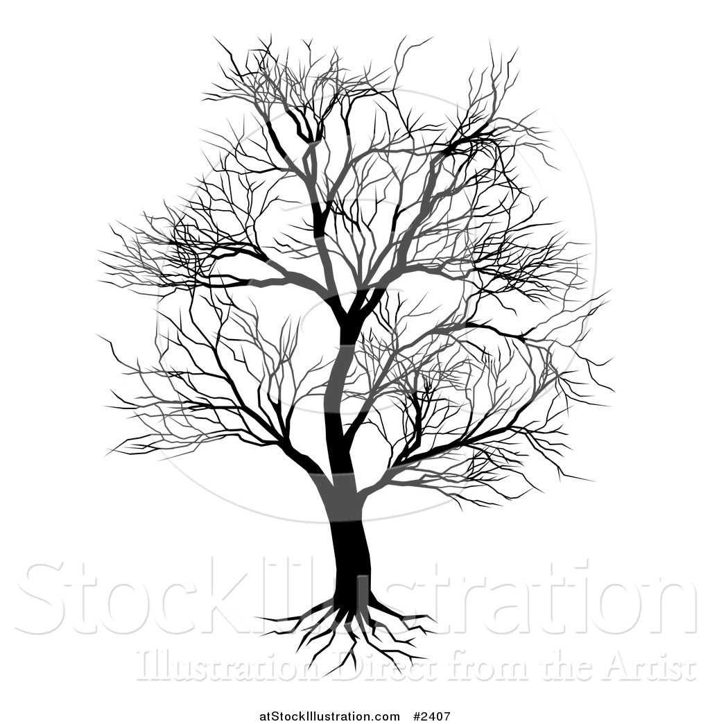 Vector Illustration of a Silhouetted Mature Bare Tree and ...