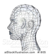 Illustration of a 3d Silver Wire Head in Profile by AtStockIllustration