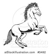 Illustration of a Black and White Rearing Horse by AtStockIllustration