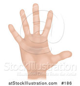 Illustration of a Caucasian Human Hand and Fingers by AtStockIllustration