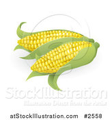 Vector Illustration of 3d Ears of Sweet Corn by AtStockIllustration