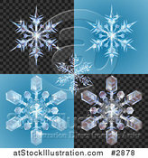 Vector Illustration of 3d Icy Snowlfakes on Blue and Blcak Patterns by AtStockIllustration