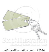 Vector Illustration of 3d Keys with Tags by AtStockIllustration
