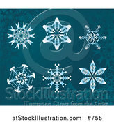 Vector Illustration of 6 Snowflake Designs on Teal by AtStockIllustration