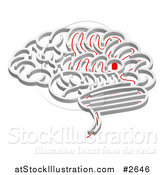 Vector Illustration of a 3d Brain Shaped Maze with a Red Path Leading to the Center by AtStockIllustration