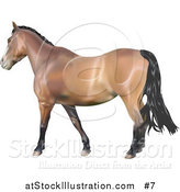 Vector Illustration of a 3D Brown Horse with a Black Mane by AtStockIllustration