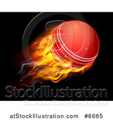 Vector Illustration of a 3d Flying and Blazing Cricket Ball with a Trail of Flames, on Black by AtStockIllustration