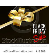 Vector Illustration of a 3d Gift Bow and Black Friday Sale Text on Black by AtStockIllustration