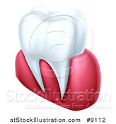 Vector Illustration of a 3d Human Tooth and Gums by AtStockIllustration