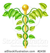 Vector Illustration of a 3d Natural Vine and Gold Staff Caduceus by AtStockIllustration