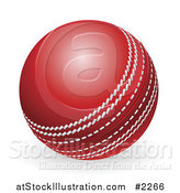Vector Illustration of a 3d Red Cricket Ball by AtStockIllustration