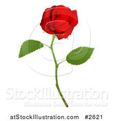Vector Illustration of a 3d Red Long Stemmed Rose by AtStockIllustration