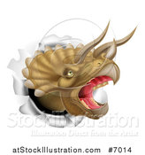 Vector Illustration of a 3d Roaring Angry Triceratops Dino Head Breaking Through a Wall by AtStockIllustration