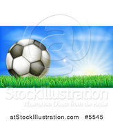 Vector Illustration of a 3d Soccer Ball in Grass at Sunrise by AtStockIllustration