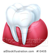 Vector Illustration of a 3d Tooth and Gums by AtStockIllustration