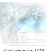 Vector Illustration of a Background of Winter Snowflakes and Flares by AtStockIllustration