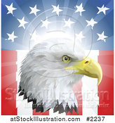 Vector Illustration of a Bald Eagle Head over an American Flag by AtStockIllustration