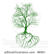 Vector Illustration of a Bare Green Tree with Brain Roots by AtStockIllustration