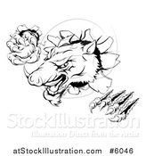 Vector Illustration of a Black and White Aggressive Clawed Boar Mascot Breaking Through a Wall by AtStockIllustration