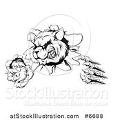 Vector Illustration of a Black and White Aggressive Raccoon Monster Shredding Through a Wall by AtStockIllustration
