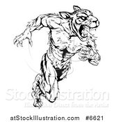 Vector Illustration of a Black and White Angry Fierce Muscular Sprinting Tiger Man Mascot by AtStockIllustration