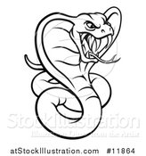 Vector Illustration of a Black and White Angry Green King Cobra Snake by AtStockIllustration