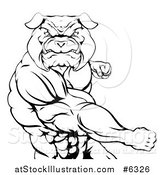 Vector Illustration of a Black and White Angry Muscular Bulldog Man Punching by AtStockIllustration