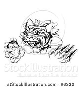 Vector Illustration of a Black and White Angry Tiger Mascot Slashing Through a Wall by AtStockIllustration