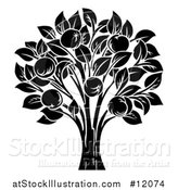 Vector Illustration of a Black and White Apple Tree by AtStockIllustration