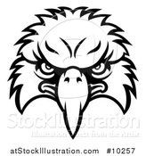 Vector Illustration of a Black and White Bald Eagle Mascot Face by AtStockIllustration