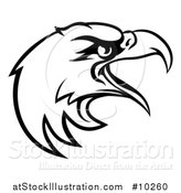Vector Illustration of a Black and White Bald Eagle Mascot Head by AtStockIllustration