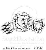 Vector Illustration of a Black and White Bear Mascot Slashing Through a Wall with a Tennis Ball in a Paw by AtStockIllustration