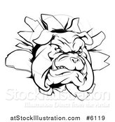 Vector Illustration of a Black and White Bulldog Breaking Through a Wall by AtStockIllustration