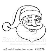 Vector Illustration of a Black and White Christmas Santa Claus Face by AtStockIllustration