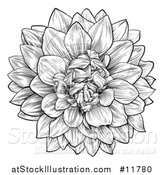 Vector Illustration of a Black and White Dahlia or Chrysanthemum Flower in Woodcut Style by AtStockIllustration