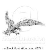 Vector Illustration of a Black and White Eagle Flying with Talons out by AtStockIllustration