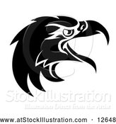 Vector Illustration of a Black and White Eagle Mascot Head by AtStockIllustration