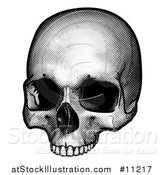 Vector Illustration of a Black and White Engraved Human Skull by AtStockIllustration