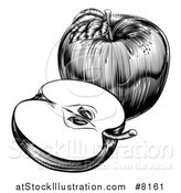 Vector Illustration of a Black and White Engraved Whole and Halved Apple by AtStockIllustration