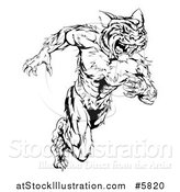 Vector Illustration of a Black and White Fierce Muscular Running Tiger Man Mascot by AtStockIllustration