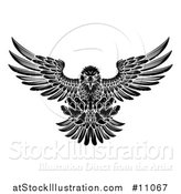Vector Illustration of a Black and White Fierce Swooping Bald Eagle with Talons Extended, Flying Forward by AtStockIllustration