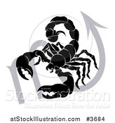 Vector Illustration of a Black and White Horoscope Zodiac Astrology Scorpio Scorpion and Sybmol by AtStockIllustration