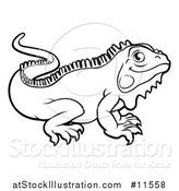 Vector Illustration of a Black and White Iguana Lizard by AtStockIllustration