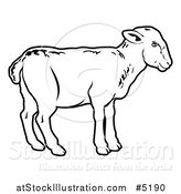 Vector Illustration of a Black and White Lamb in Profile by AtStockIllustration