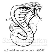 Vector Illustration of a Black and White Lineart Angry King Cobra Snake Ready to Strike by AtStockIllustration