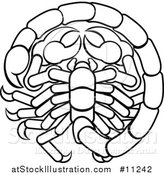 Vector Illustration of a Black and White Lineart Scorpio Scorpion Astrology Zodiac Horoscope by AtStockIllustration