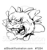Vector Illustration of a Black and White Mad Wildcat Mascot Head Breaking Through a Wall by AtStockIllustration